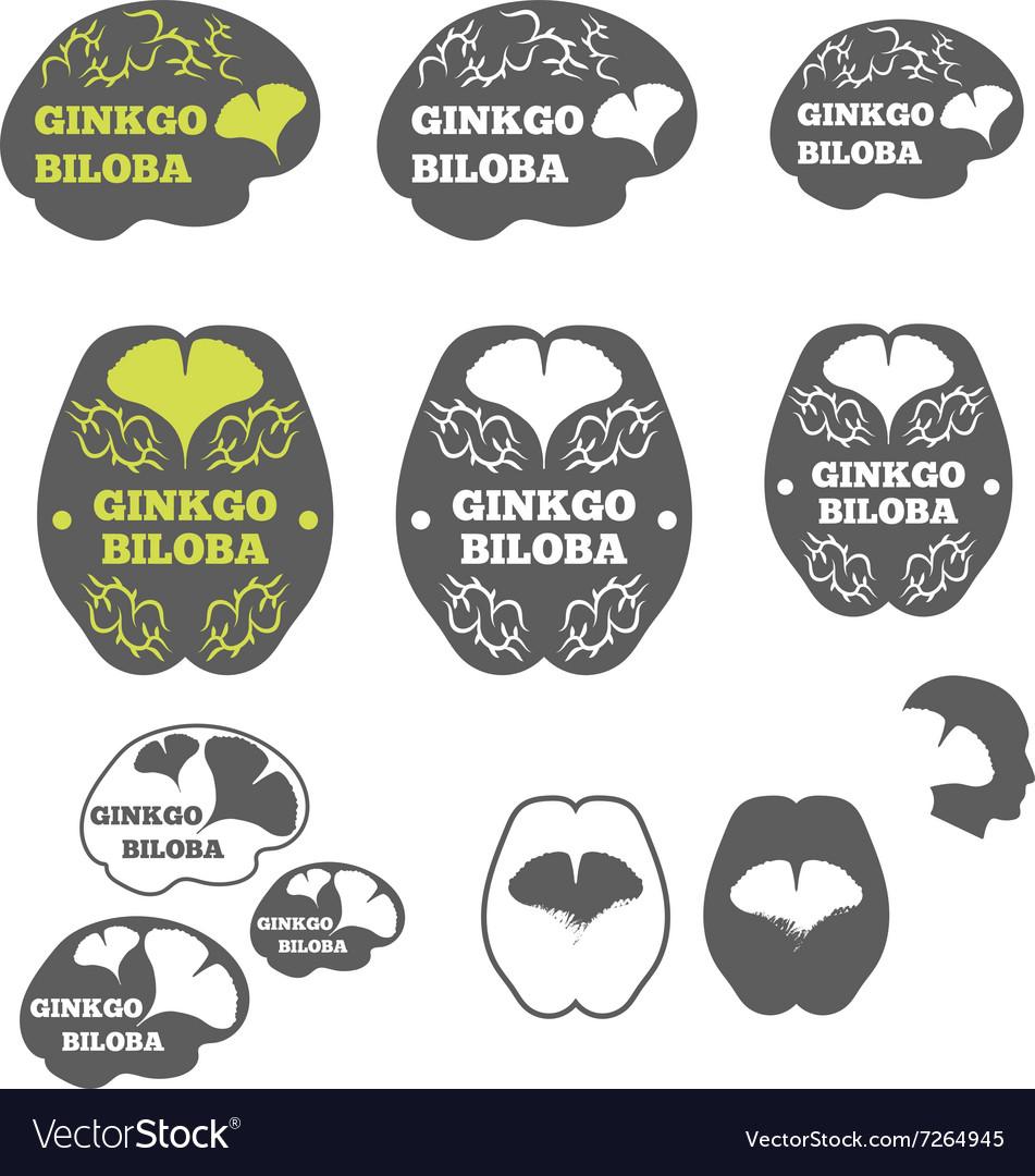 Logos ginkgo biloba