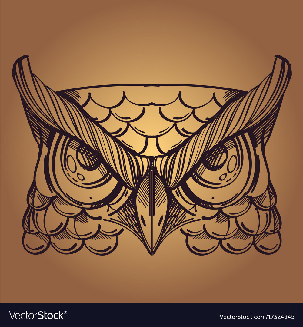 Muzzle of an owl for creating sketches of tattoos