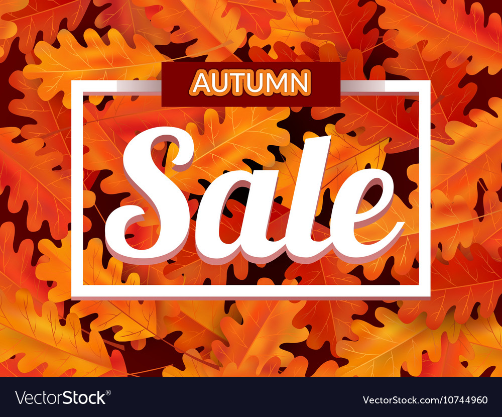 Autumn sale background