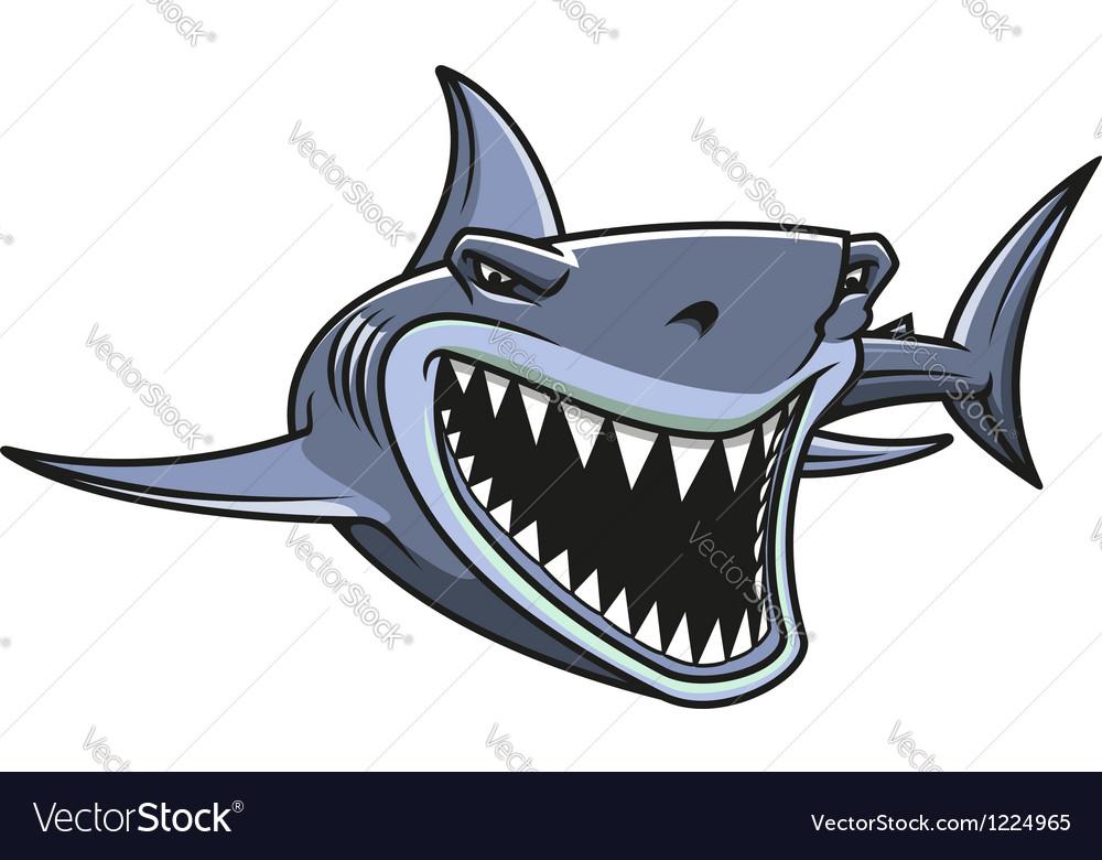 Danger shark attacks