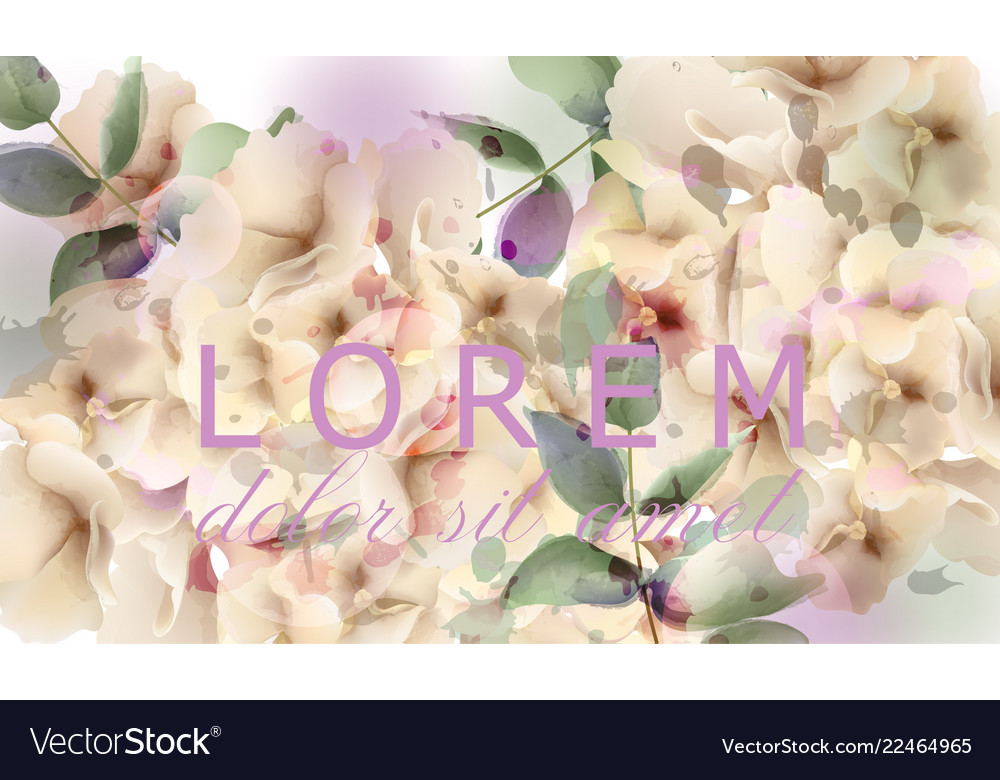 Hydrangeas watercolor floral background