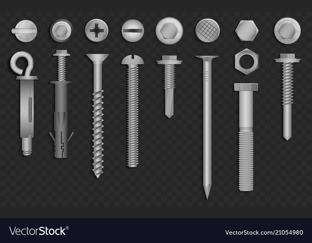 Realistic 3d screws nuts bolts rivets vector image