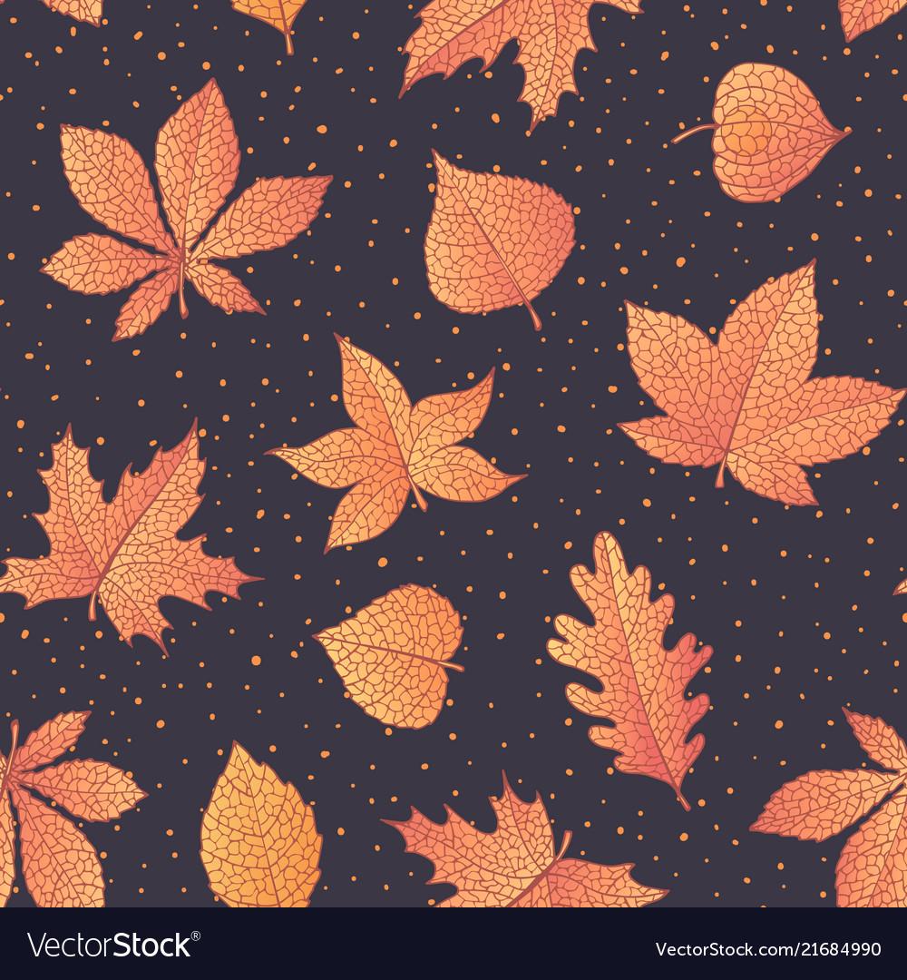 Autumn pattern with oak maple beech leaves