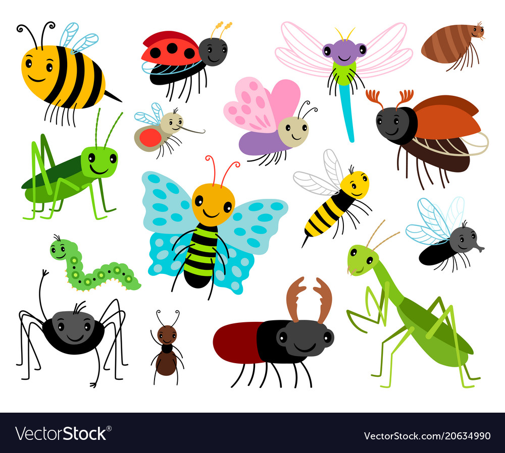 Cartoon Pictures Of Garden Insects - Various Kinds Of Insects