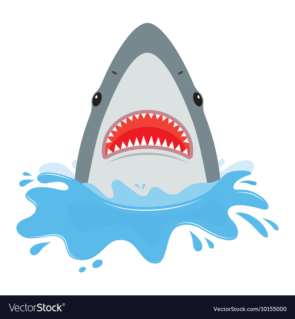 Shark with open mouth