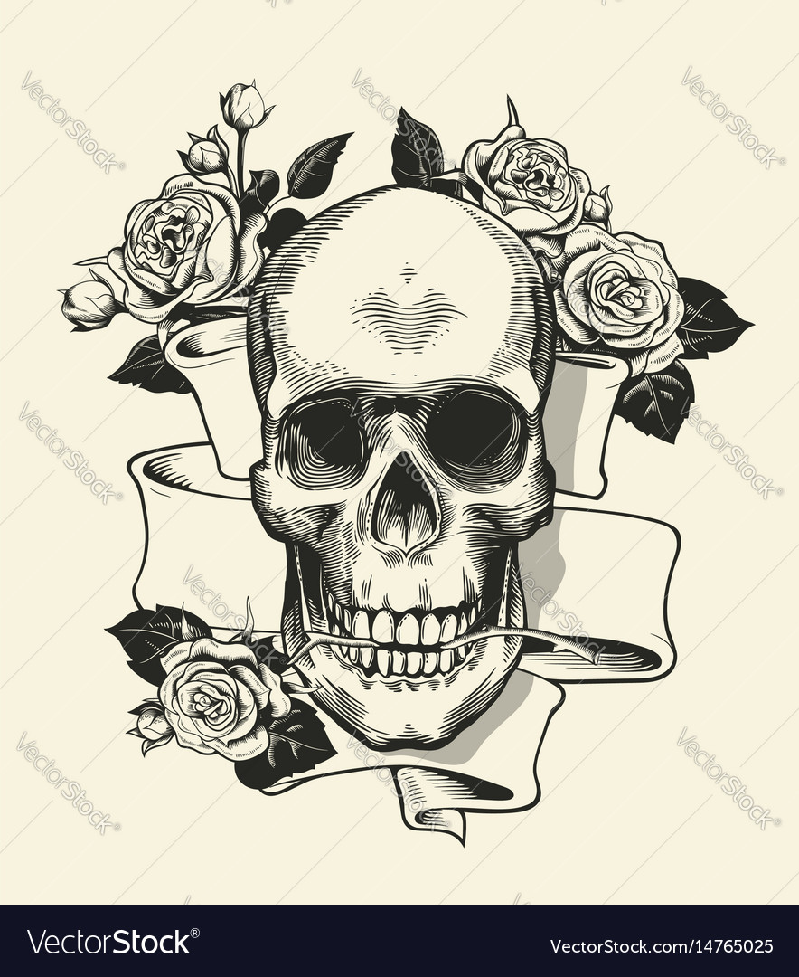 Human skull with rose grasped with jaws and ribbon