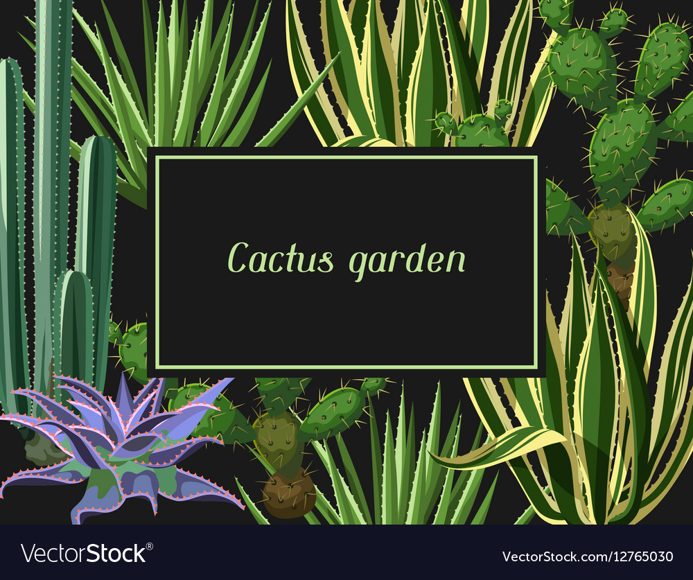 Card with cactuses and succulents set Plants of