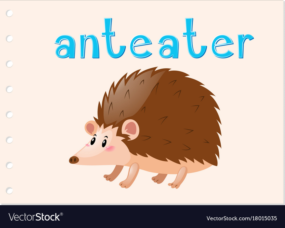 Animal Flashcard With Anteater Royalty Free Vector Image Giant Animals