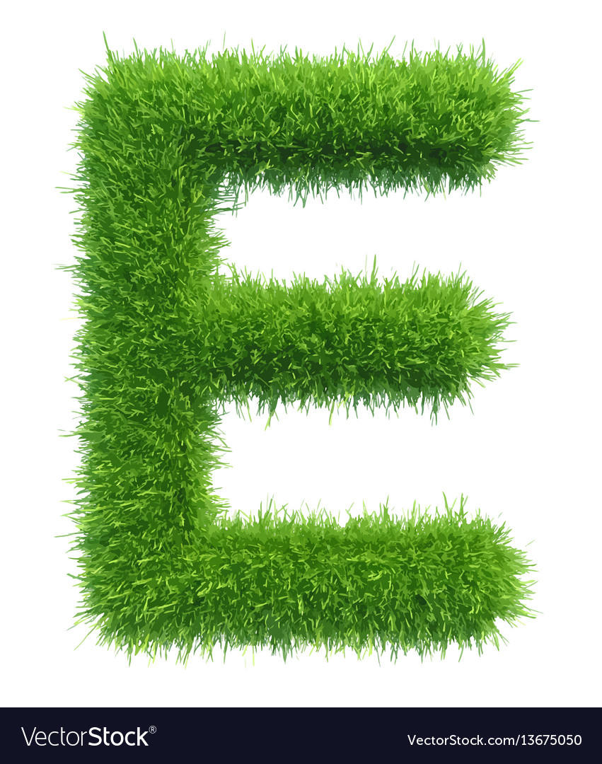 Capital letter e from grass on white vector image