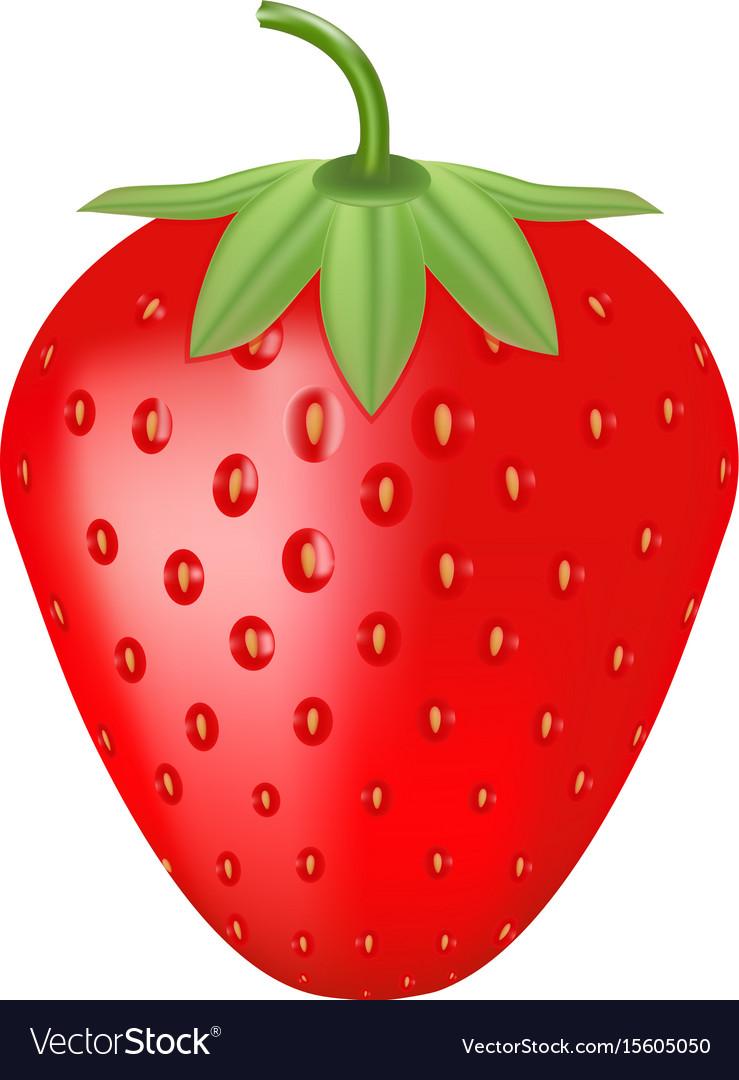 Single fresh ripe strawberry isolated on a white
