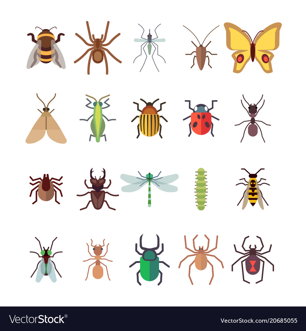 Flat insects icons set butterfly dragonfly
