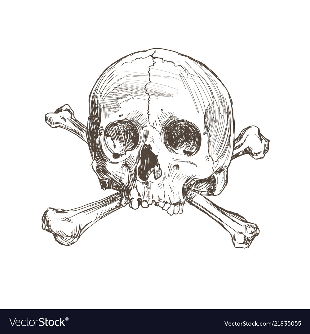 Hand Drawing Skull And Bones Royalty Free Vector Image