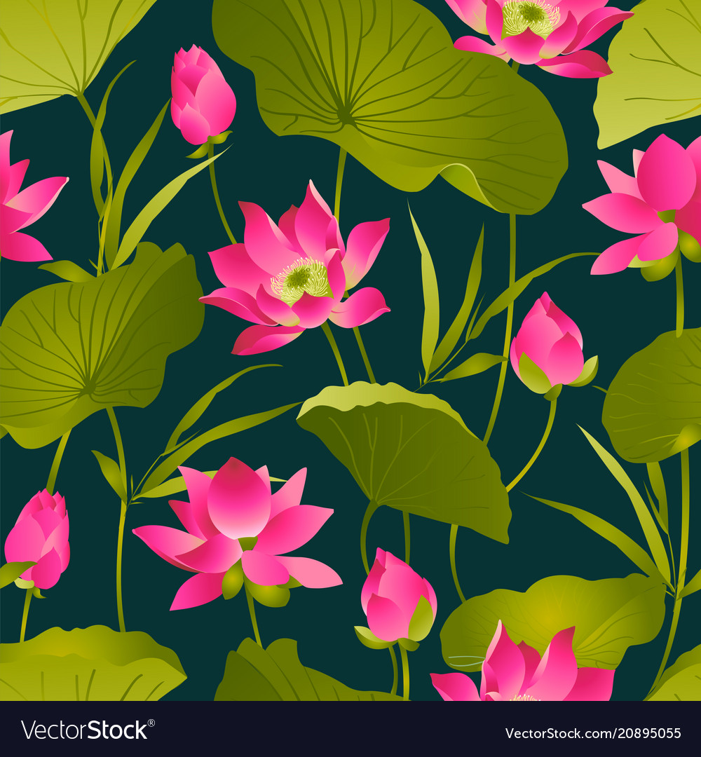 Lotus flowers and leaves watercolor