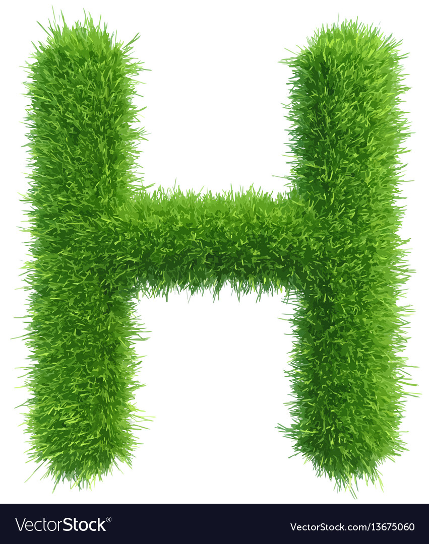426d22558 Capital letter h from grass on white Royalty Free Vector