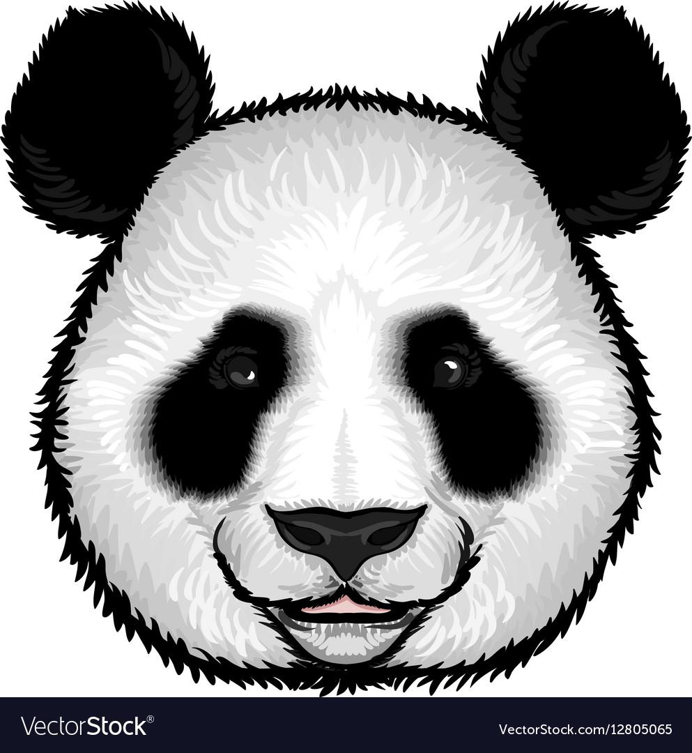 cute fluffy panda face royalty free vector image