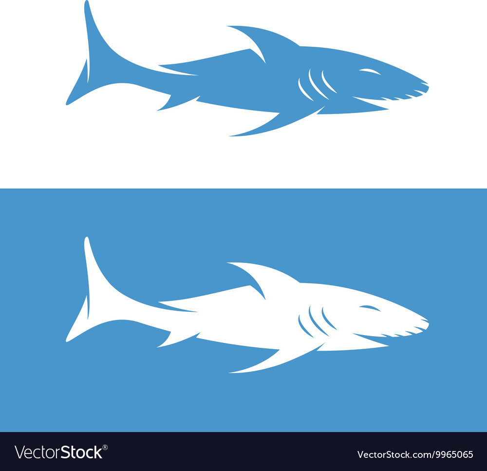design template of the abstract shark royalty free vector