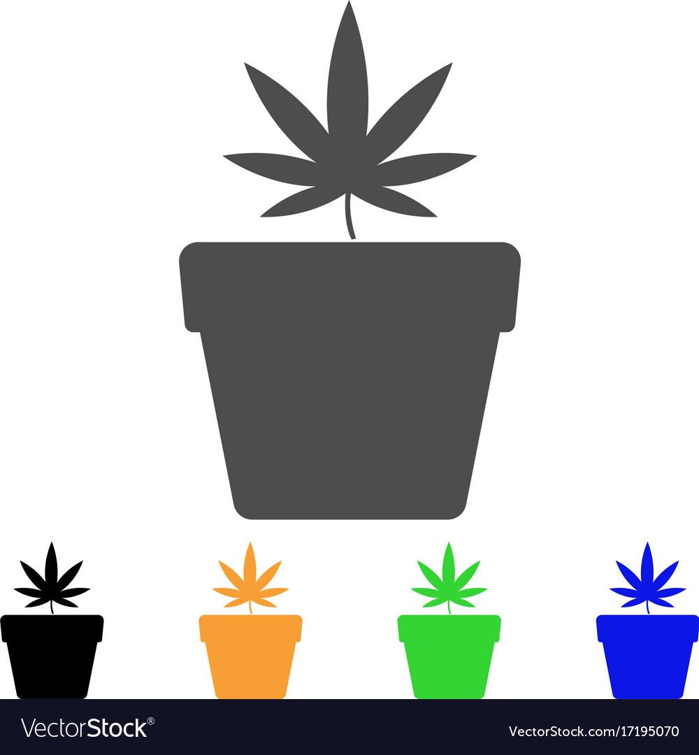 Cannabis pot flat icon vector image