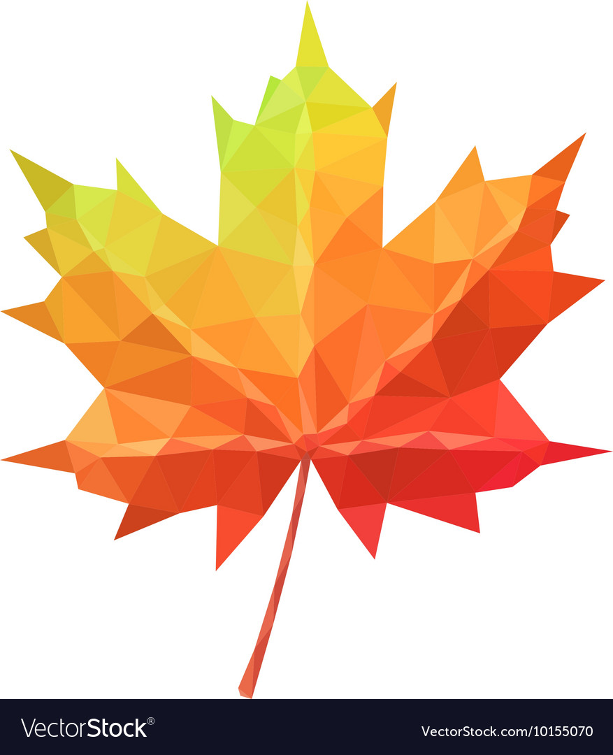 low poly maple leaf royalty free vector image vectorstock rh vectorstock com maple leaf vector image maple leaf vector icon