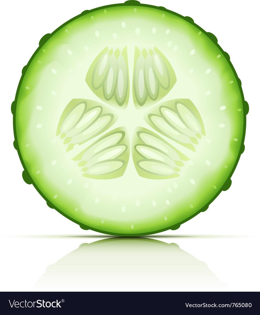 Ripe cucumber Royalty Free Vec...