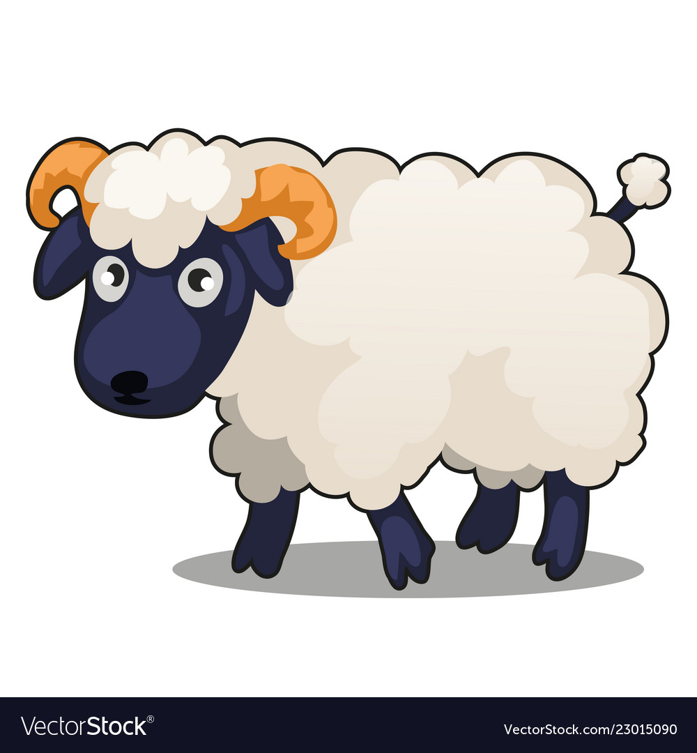 Little cute farm animal sheep stands isolated on