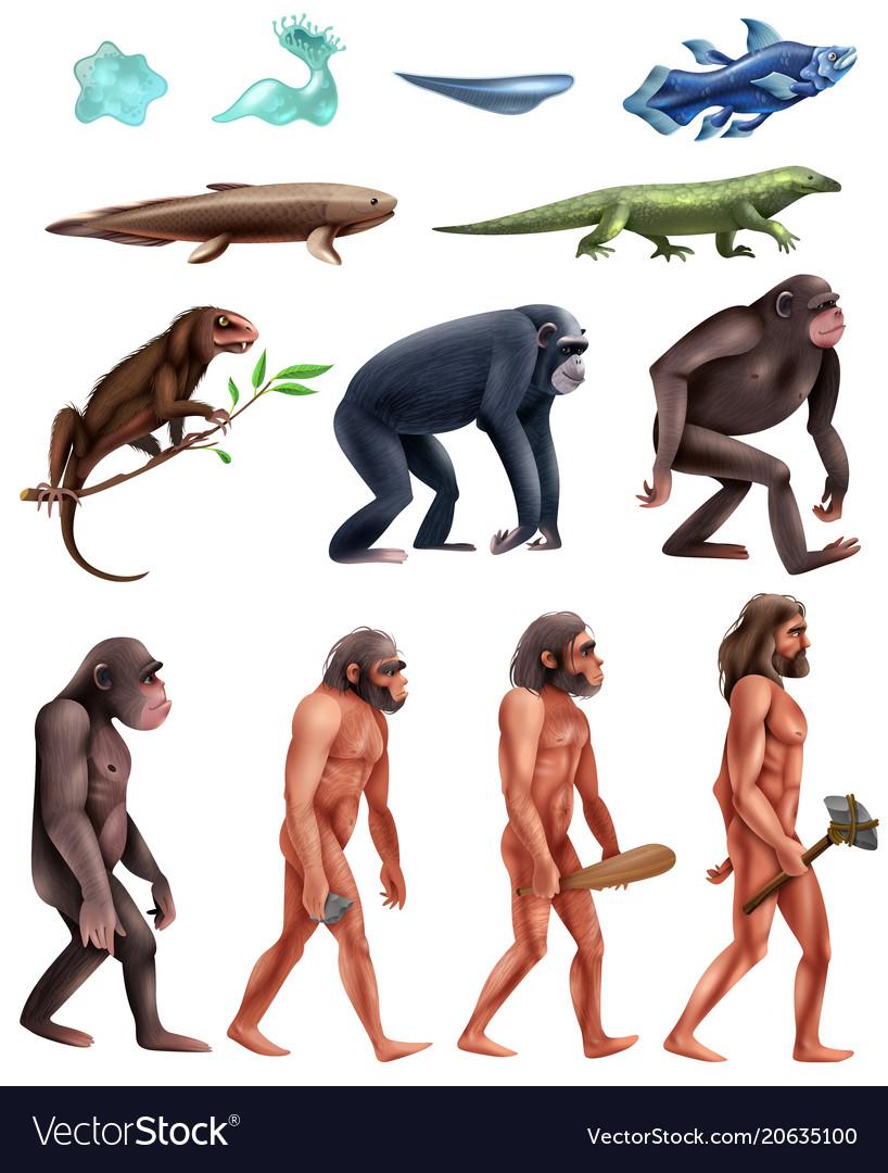Darwin evolution icon set
