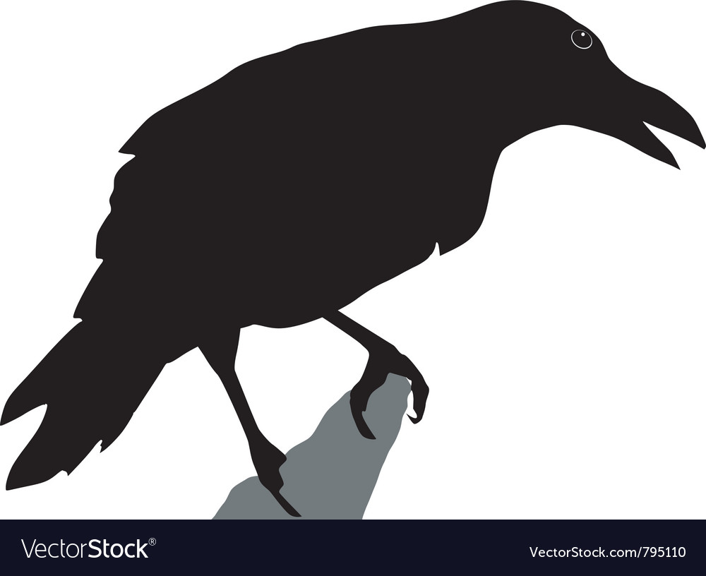 Black silhouette of crow vector image