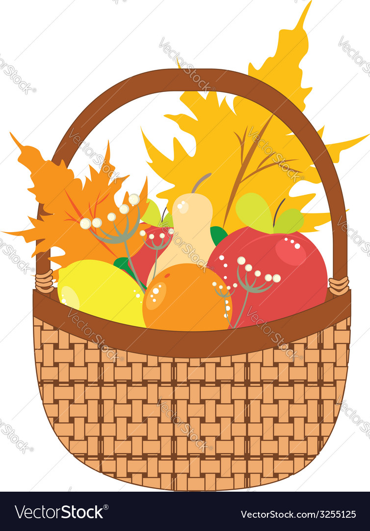 Basket of Pears and Apples3 vector image
