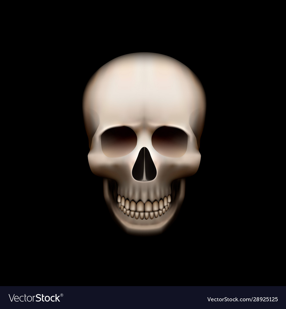 Human skull isolated on black color object