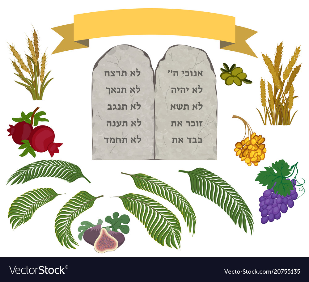 Tablets of stone and seven species set vector image