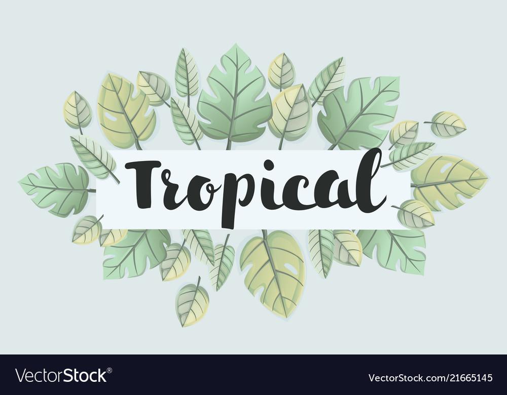 Trendy tropical leaves design