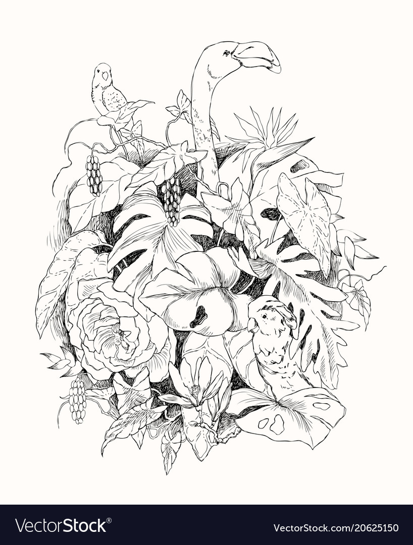 Hand drawn branches and leaves tropical plants