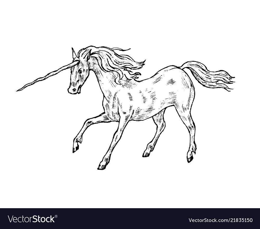 Mythological unicorn mythical antique magic