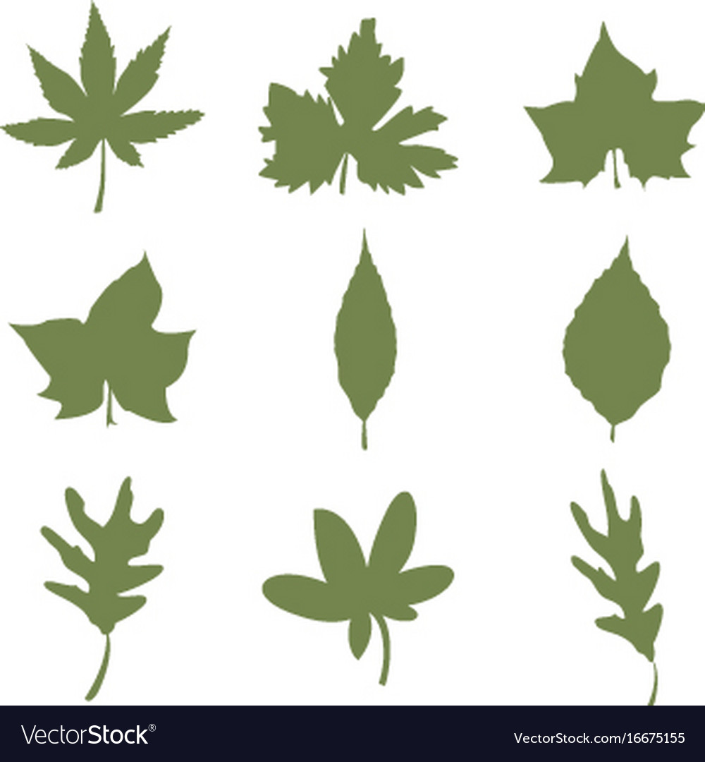 Set of autumn leaves nature silhouette icon