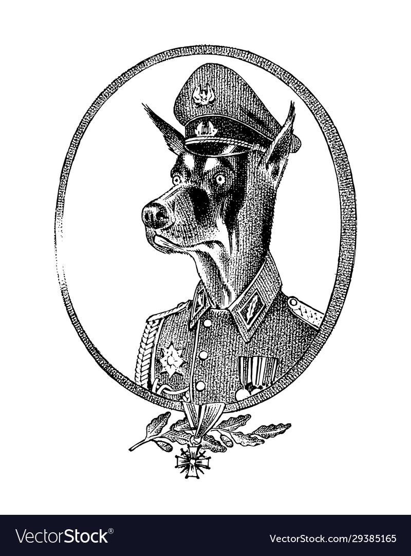 Military dog or dobermann animal character or