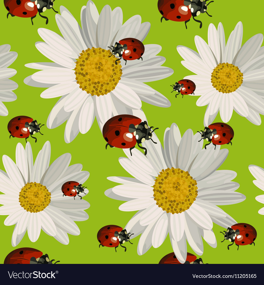 Seamless pattern with daisy flowers and ladybugs vector image izmirmasajfo