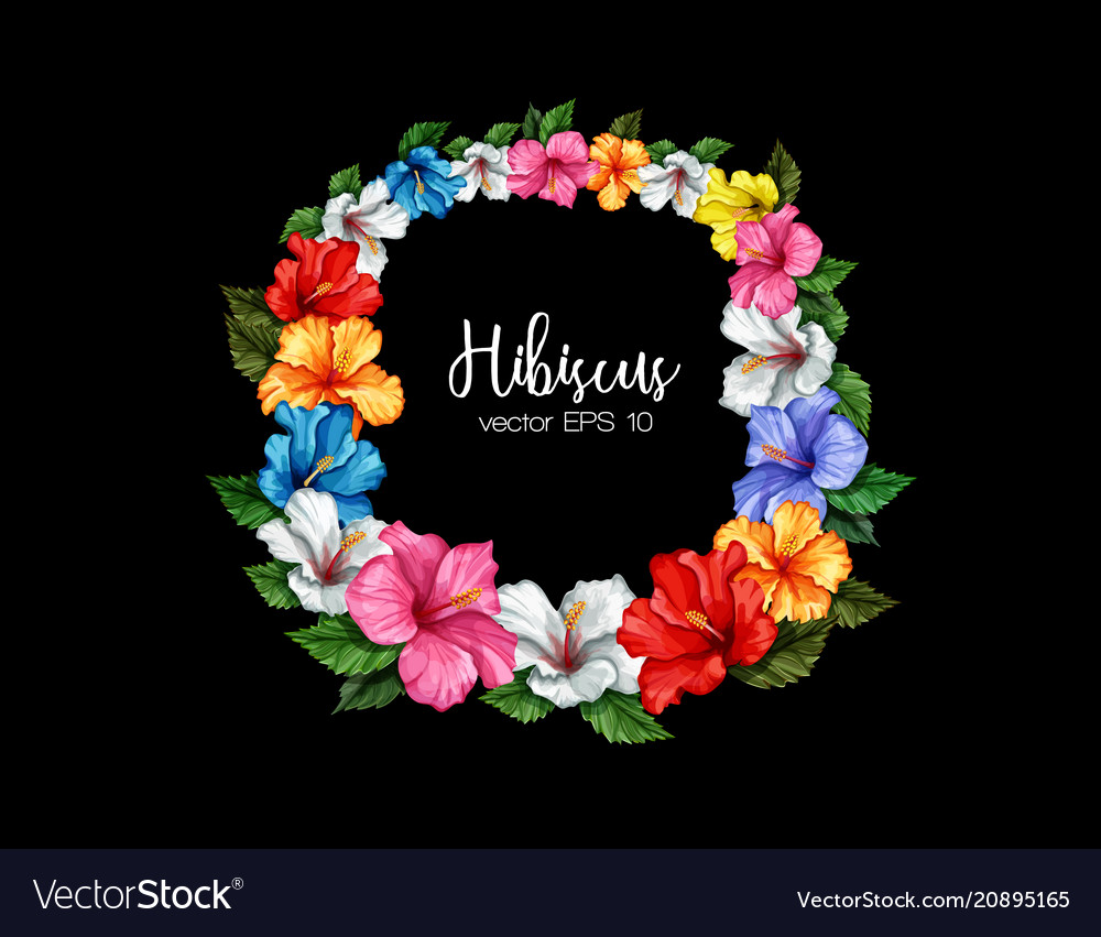 Tropical leaf hibiscus flower frame banner vector image