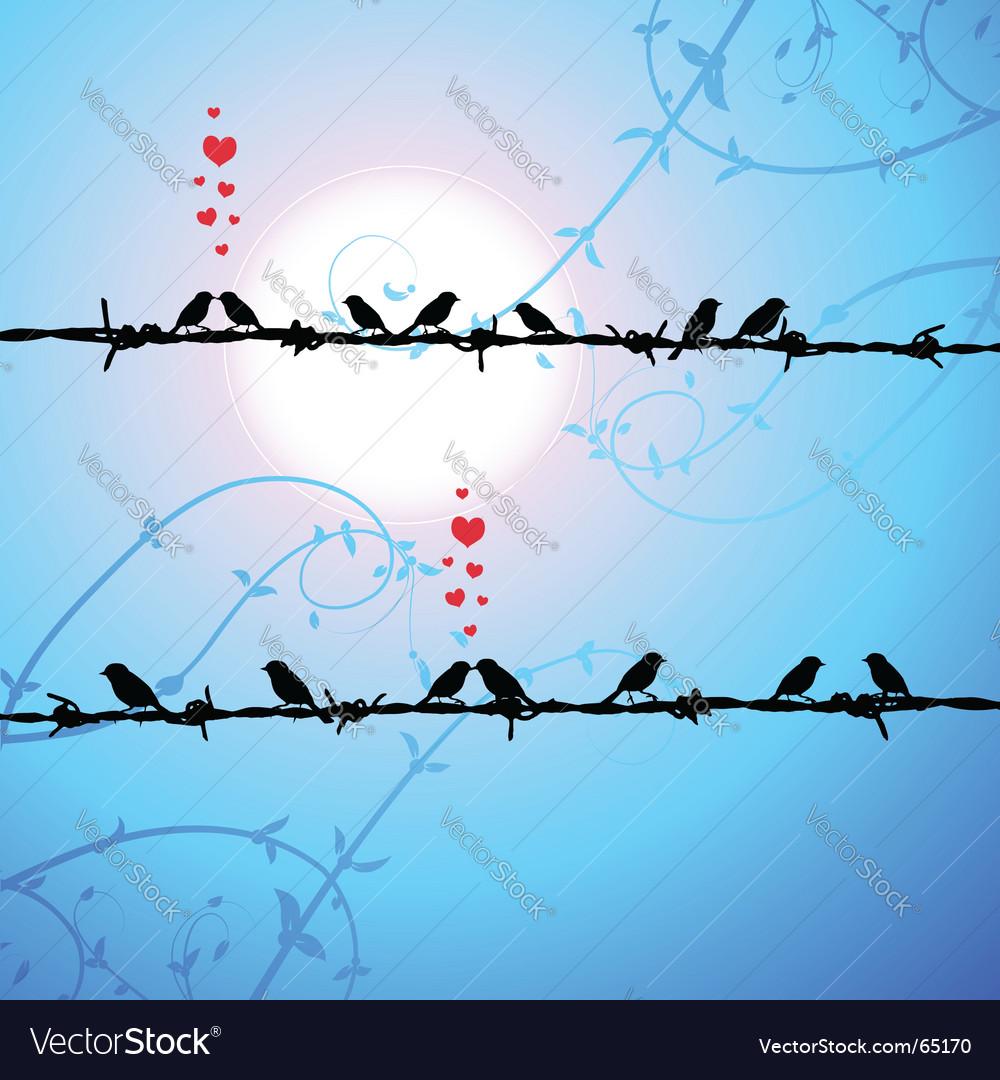 love birds kissing wallpaper. love birds kissing wallpaper