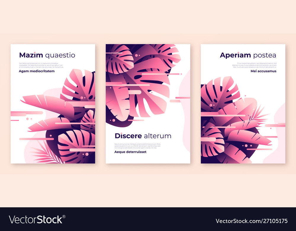 Abstract tropical backgrounds brochure