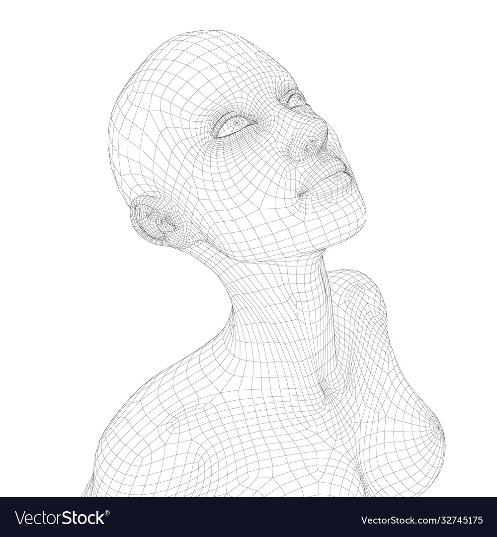 Wireframe a girl with her head up isometric