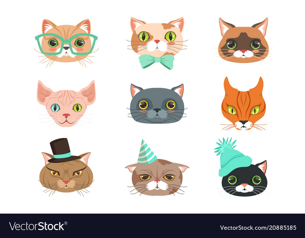 Set of cute cats heads of different breeds