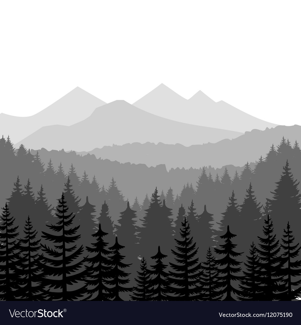 Pine forest and mountains backgrounds