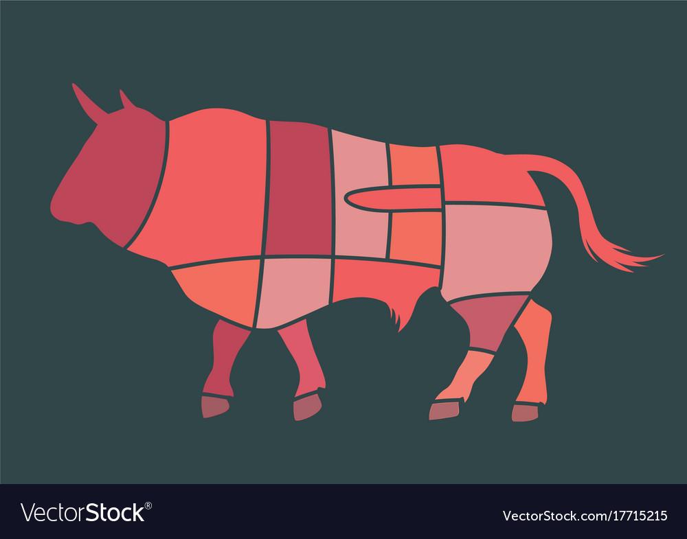 Bull cuts vector image