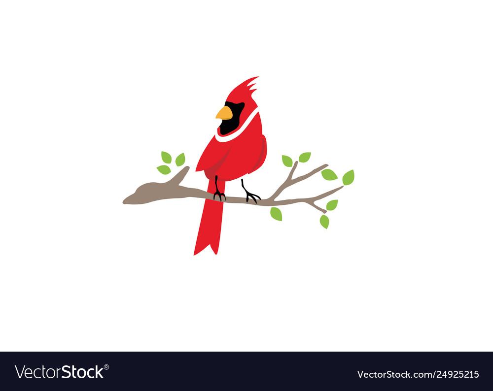 Cardinal bird logo symbol design