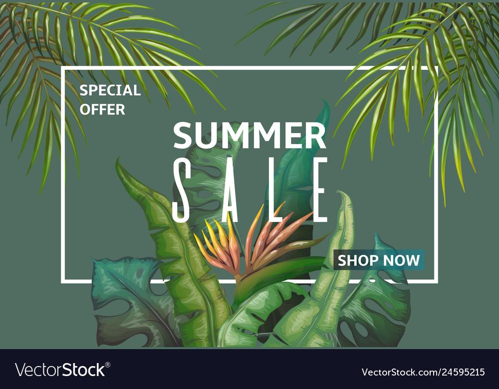 Summer sale banner palm leaves discount frame