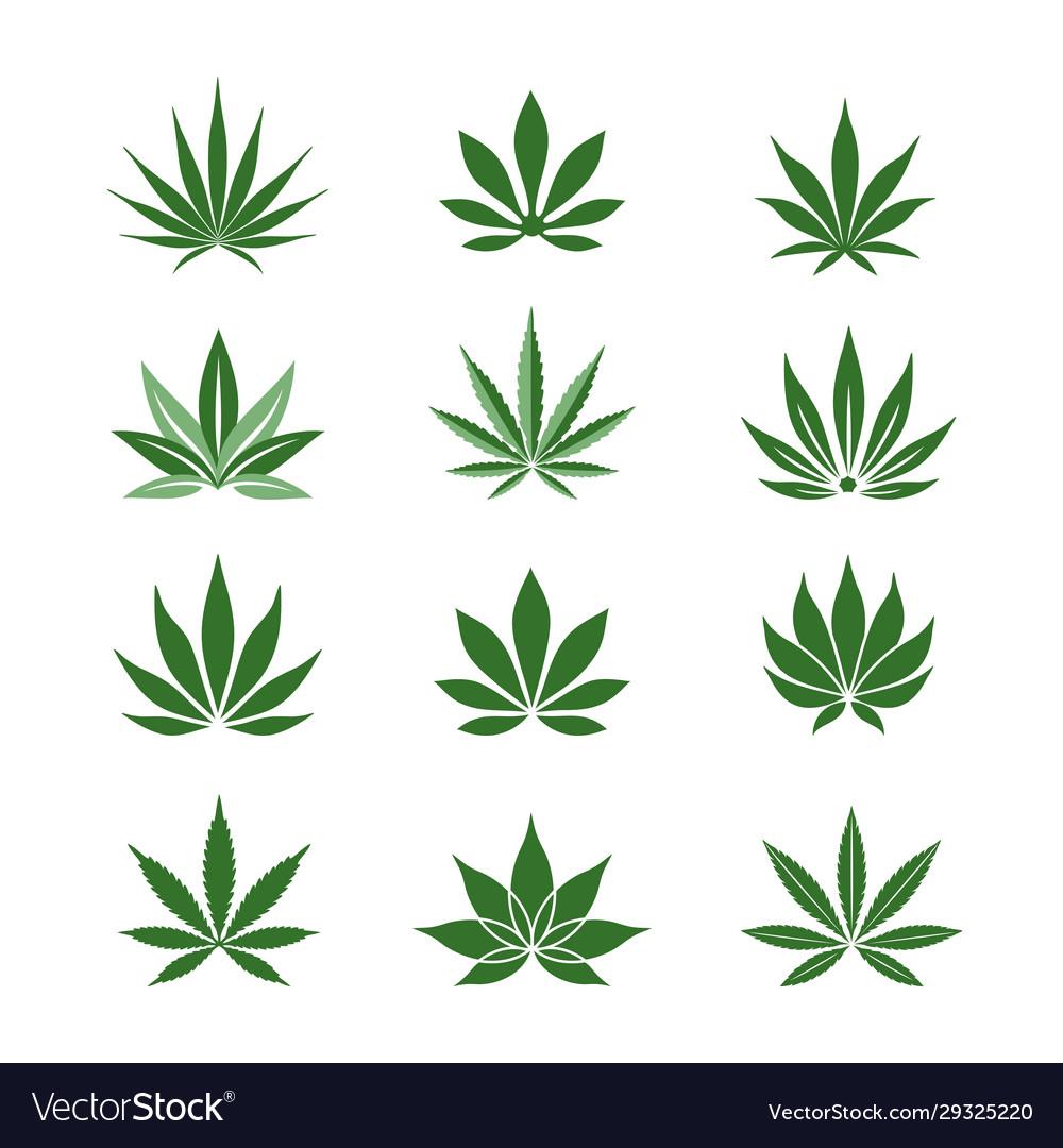 Stylized hemp leaves