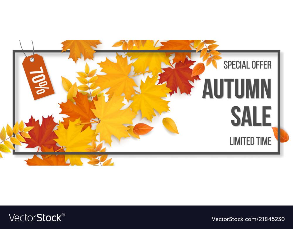 Sale frame autumn fallen leaves