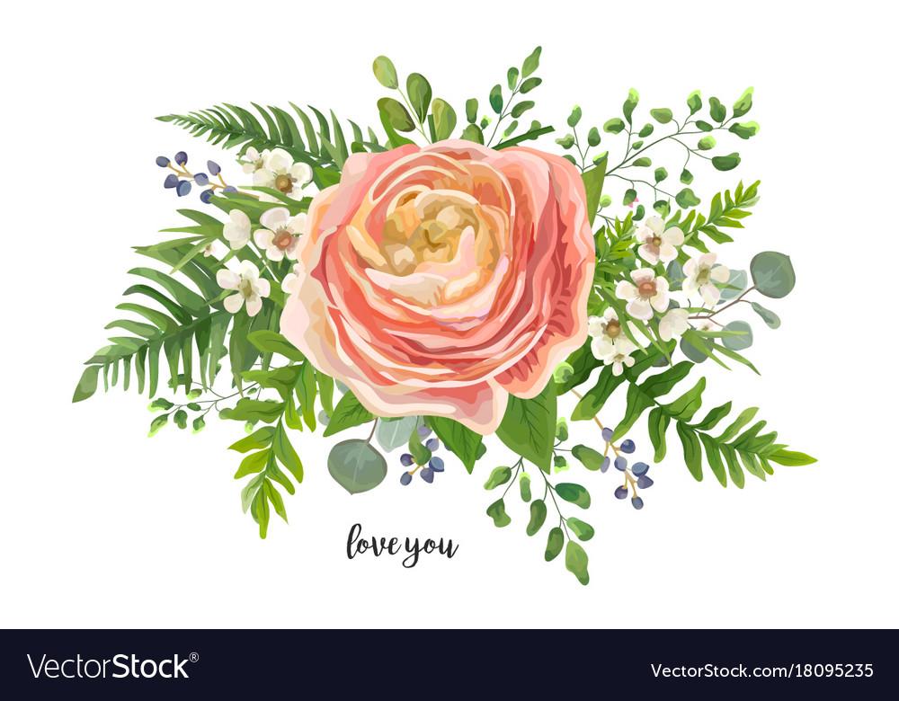 Flower Bouquet Watercolor Element Peach Pink Vector Image