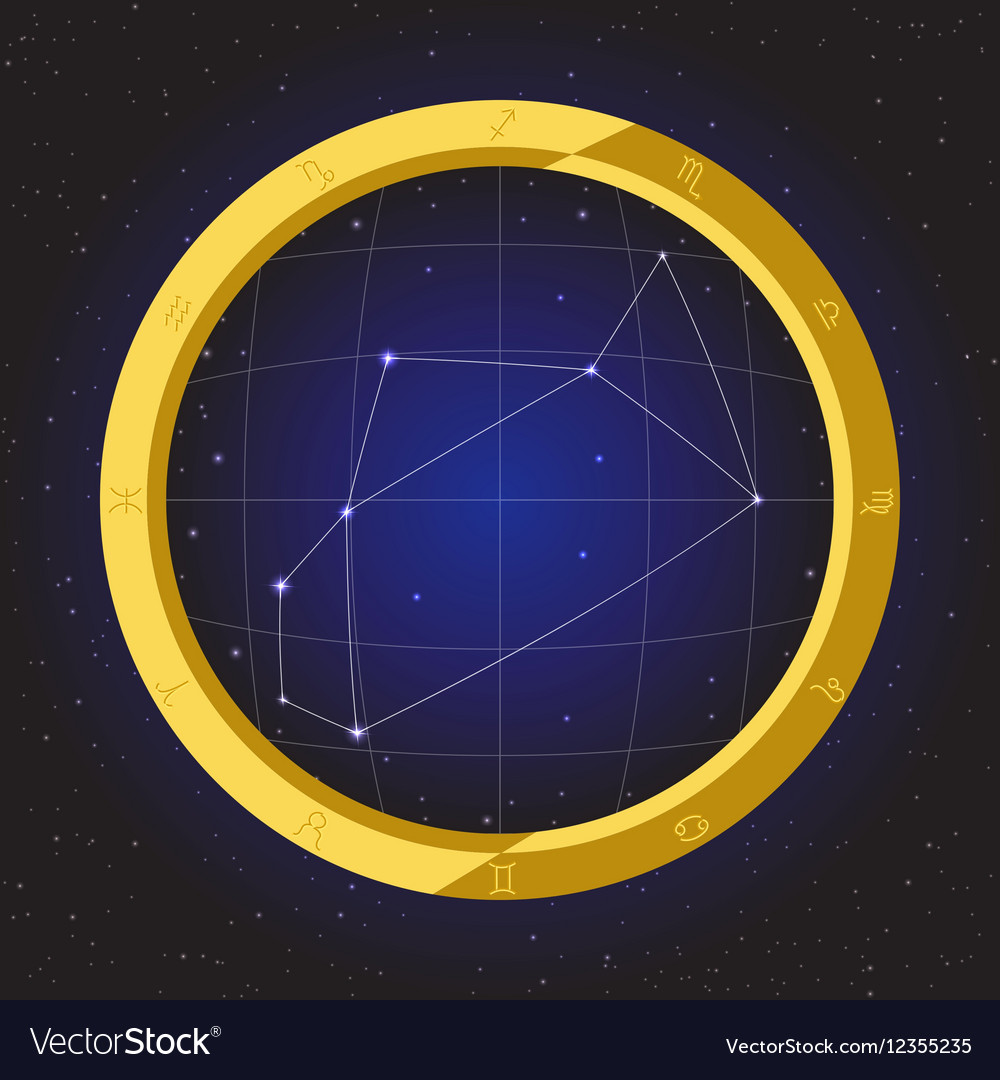 Sagittarius star horoscope zodiac in fish eye vector image