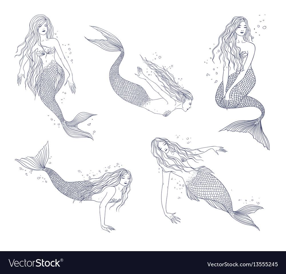 Mermaid in various postures hand drawn contour