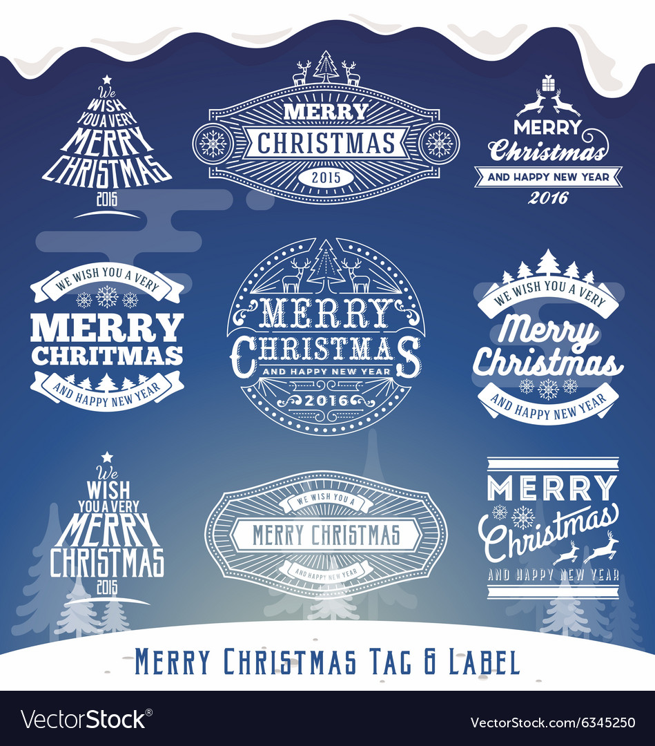 Set of Christmas decoration typography tag and lab